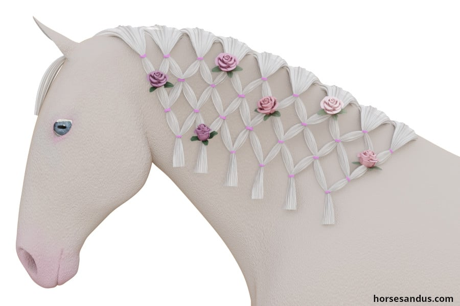 Horse Continental Braid decorated