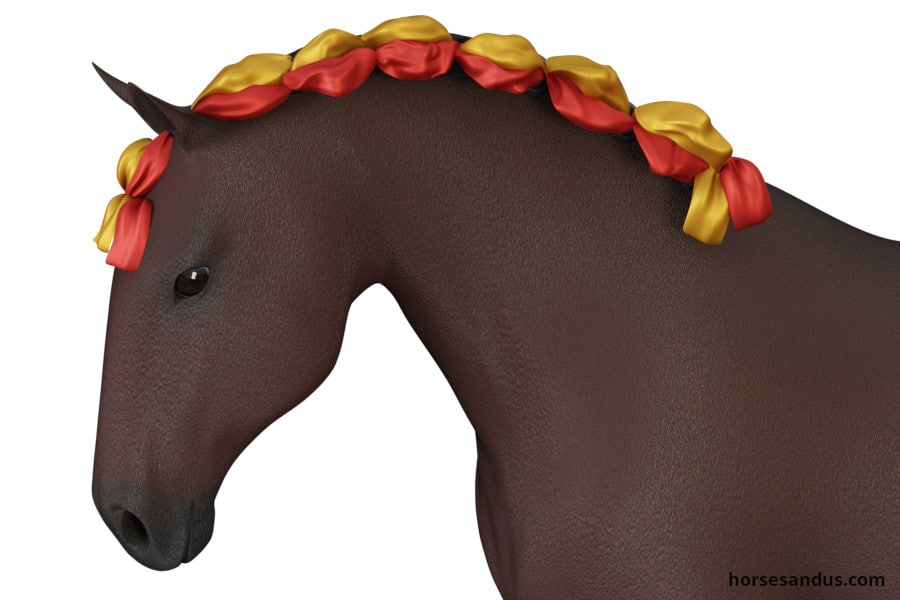 Traditional Lusitano horse braids with ribbons