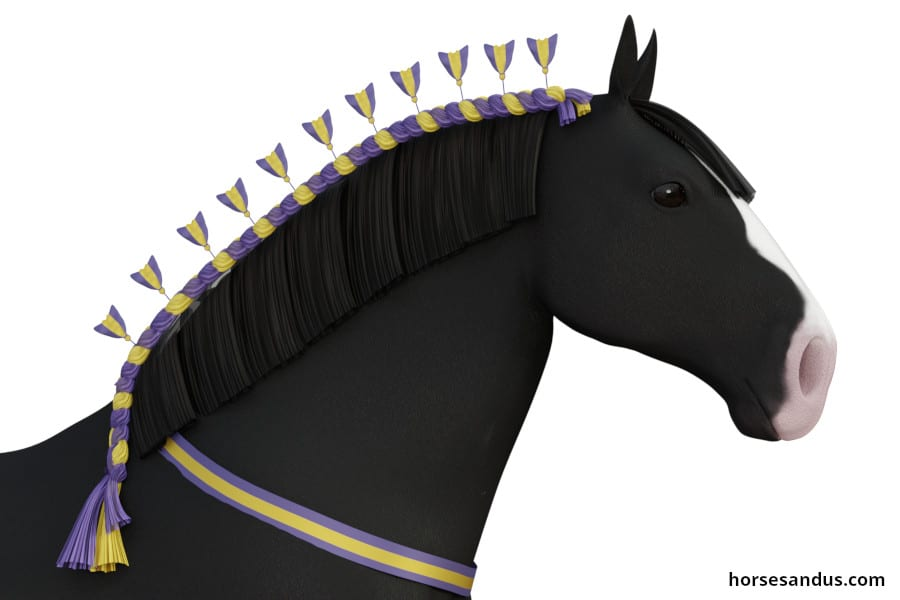 Traditional shire horse decorated braids